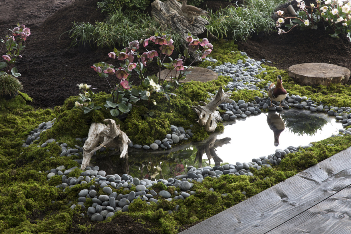 Brook Klausing And Jesse Seegers Create A Hidden Oasis For